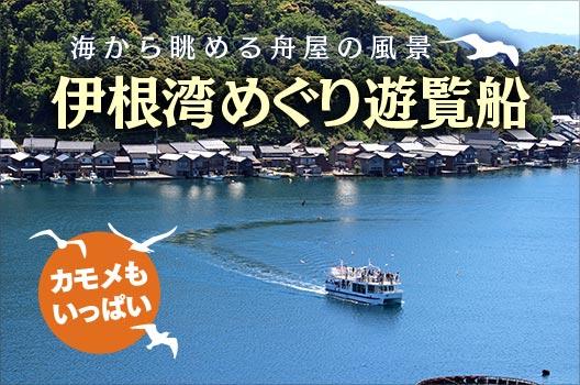 伊根湾めぐり遊覧船 海から眺める舟屋の風景 カモメもいっぱい